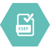 esef reporting software